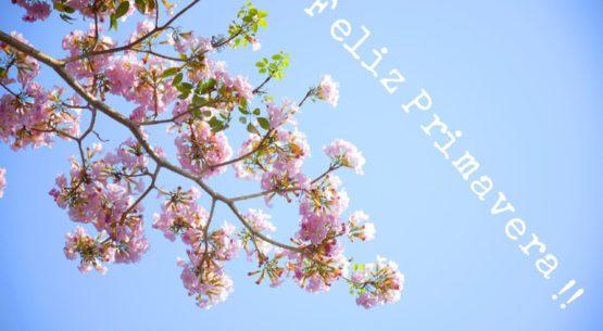 La Primavera en Espaciogeo